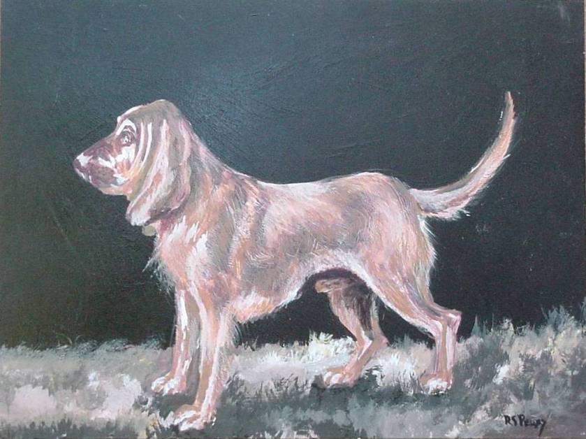 #25 Bloodhound 12x16