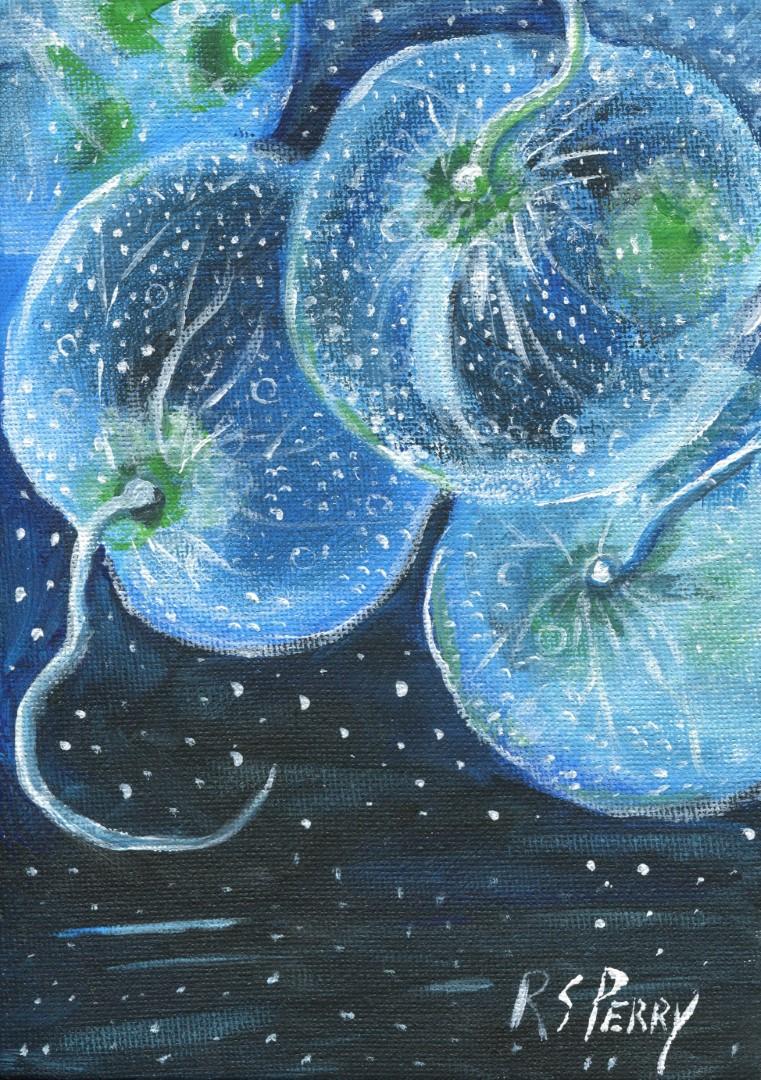Bioluminescent dinoflagellate-001 (Large)